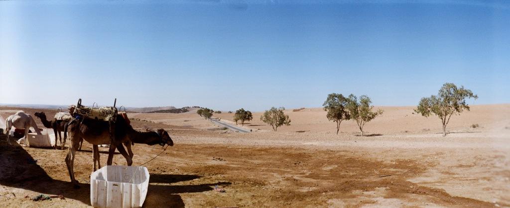Sa mạc Agafay ở Marrakech